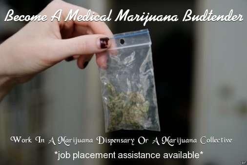 New Job Oportunity - Working With Marijuana | Fresno Famous